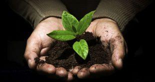 Ăn quả nhớ kẻ trồng cây